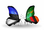 Two Butterflies With Flags On Wings As Symbol Of Relations Estonia And Zambia