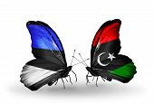 Two Butterflies With Flags On Wings As Symbol Of Relations Estonia And Libya