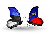 Two Butterflies With Flags On Wings As Symbol Of Relations Estonia And Liechtenstein