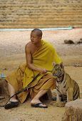Tiger Temple In Kanchanaburi