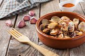 picture of clam  - clams with garlic at paprika spanish seafood style - JPG