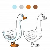 picture of baby goose  - Game for children - JPG