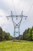 pic of power transmission lines  - Electricity transmission pylon and power lines in a forest - JPG