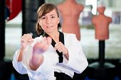 Woman in martial art training in a gym, she is doing a taekwondo front kick