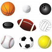 sport balls detail vector