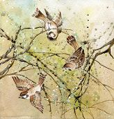 Drawing of three sparrows sitting on tree branches over colorful background