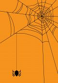 Vektor-Illustration von Spider-web