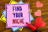 Conceptual Hand Writing Showing Find Your Niche. Business Photo Text Search For Your Field Decide Ch poster