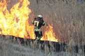 Firefighters Battle A Wildfire In Spring. Smoke Field And Fireman After Wildfire. Fire. Wildfire Bur poster