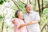 Happy Senior Asian Couple Dancing In The Park In Sunny Day poster