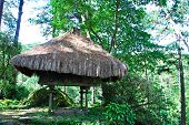 picture of ifugao  - Traditional Ifugao House on a Natural Environment - JPG