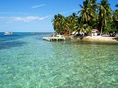 Coral Reefs Of Tobacco Caye