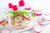Easy Breakfast Concept With Crisp Bread, Radish Slices, Scallion, Cottage Cheese And Pepper. Healthy poster