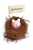 Retirement nest egg, piggy bank in bird's nest
