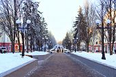 Winter Park With Many Big Trees And Path. Beautiful Park Alley With Bench And Trees In Winter Sunny  poster