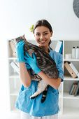 Attractive Veterinarian Smiling At Camera While Holding Grey Tabby Cat On Hands poster