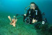 Scuba Diver photographer and Lionfish