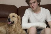 A Broken Arm. Fracture Of The Forearm At The Teenager. Arm In Plaster.the Dog And The Teenager. poster
