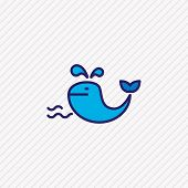 Vector Illustration Of Whale Icon Colored Line. Beautiful Naval Element Also Can Be Used As Cetacean poster