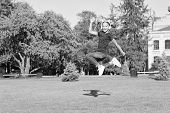 Dancing Jump Style. Happy Dancing Girl. Small Dancer Jumping To Music On Green Grass. Little Child E poster
