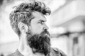 Waiting And Tinking. Thoughtful Man Outdoor. Facial Skin Care. Mature Hipster With Beard Hair. Beard poster