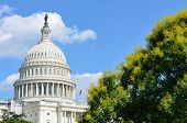 stock photo of cupola  - US Capitol Building in a cloudy summer day  - JPG