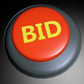 Bid 3D Button