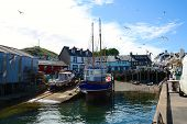Fishing boat at Mallaig harbour