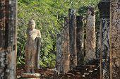 Buddha in the temple of Polonnaruwa