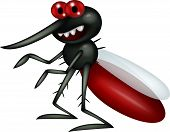 stock photo of gnat  - Vec tor illustration of mosquito cartoon isolated on white background - JPG