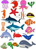 Sea-Life-Cartoon-set