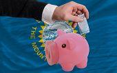 Financiamento Euro em rico mealheiro bandeira do estado americano de Dakota do Sul