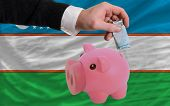 Funding Euro Into Piggy Rich Bank National Flag Of Uzbekistan