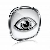 Eye Icon Grey Glass, Isolated On White Background.