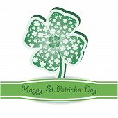 St. Patrick's Day.  Green Clover  Background On White