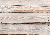 Texture Of Uncolored Pine-tree Wooden Lining Boards