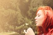 Beautiful Woman With Red Hair Blows Into Dandelion
