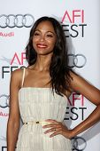LOS ANGELES - NOV 9:  Zoe Saldana at the AFI FEST 2013 Presented By Audi -