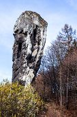 National Park In Ojcow - Poland. Rock Called Hercules' Club.