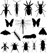 Creepy Crawlies Silhouette Collection No.1.