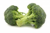 Fresh broccoli florets on a white background
