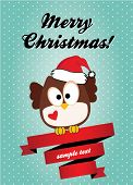 foto of snow owl  - Christmas card with cute owl - JPG