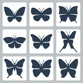 Vector Isolated Butterflies Icons Set