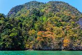 Tropical dense jungle coastline winter colors on a limestone hill, Pang Nga bay, Thailand