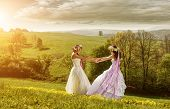 2 beautiful bride in the morning the idyllic meadow friendship symbol