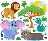 Cute African animals collection 2 - eps10 vector illustration.