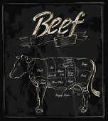 vector hand drawn beef