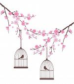 picture of caged  - vector illustration of cherry branches with bird cages - JPG