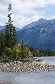 Athabasca River Scenic