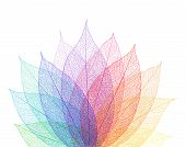 picture of ethereal  - Leaf abstract background - JPG